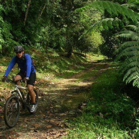 Ruta en Bicicleta por el Embalse de Agua Fría en El Jarillo