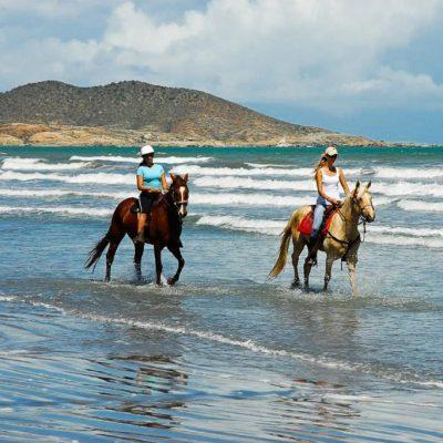 Half Day Cabalgata por la Playa en Margarita